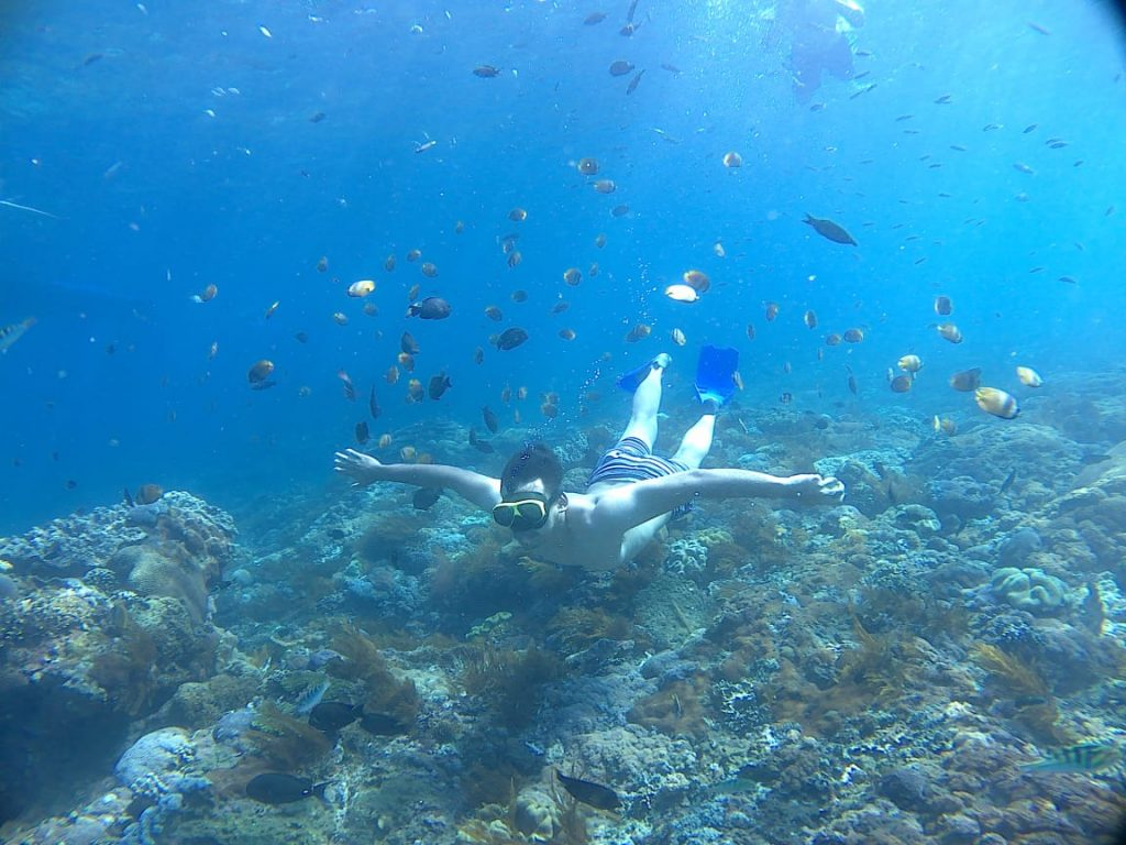 snorkeling wall point nusa penida