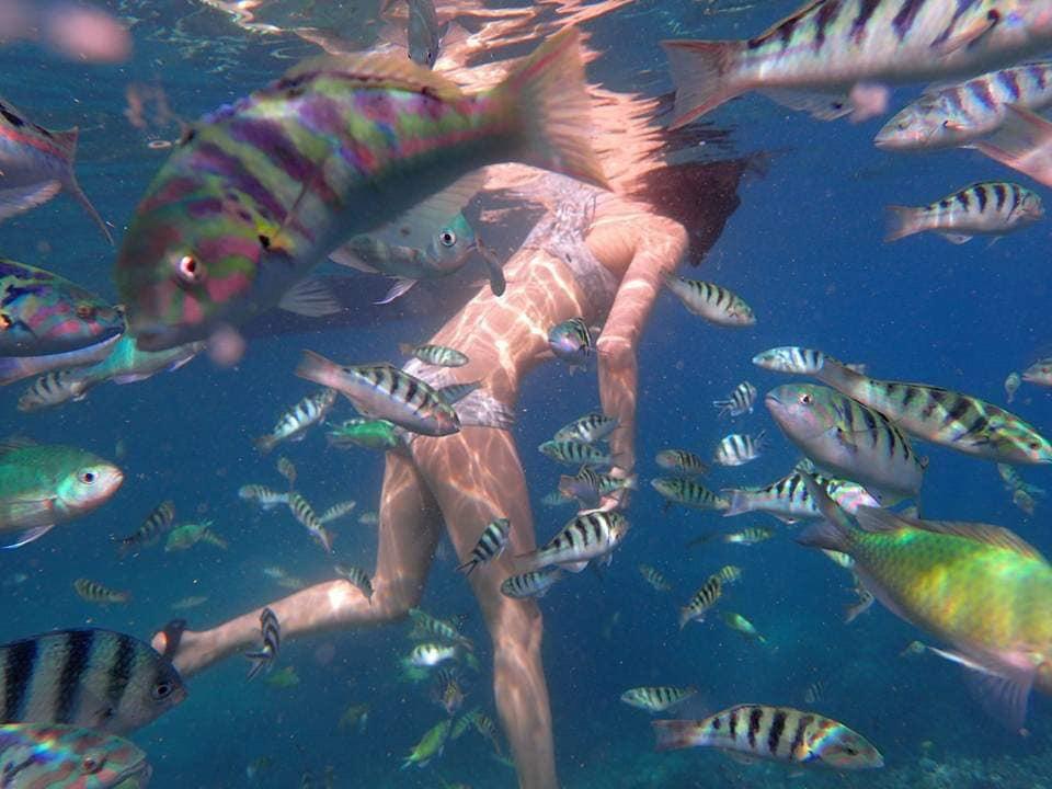 Spot Snorkeling Favorit di Nusa Penida2