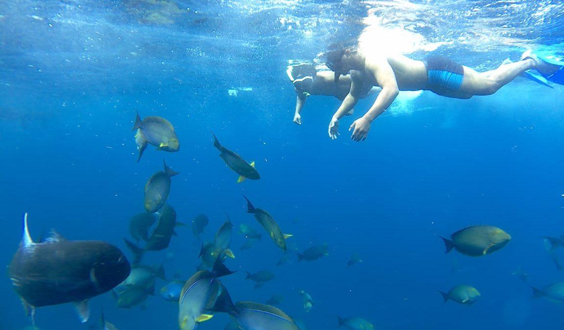 GT Point Nusa Penida 1